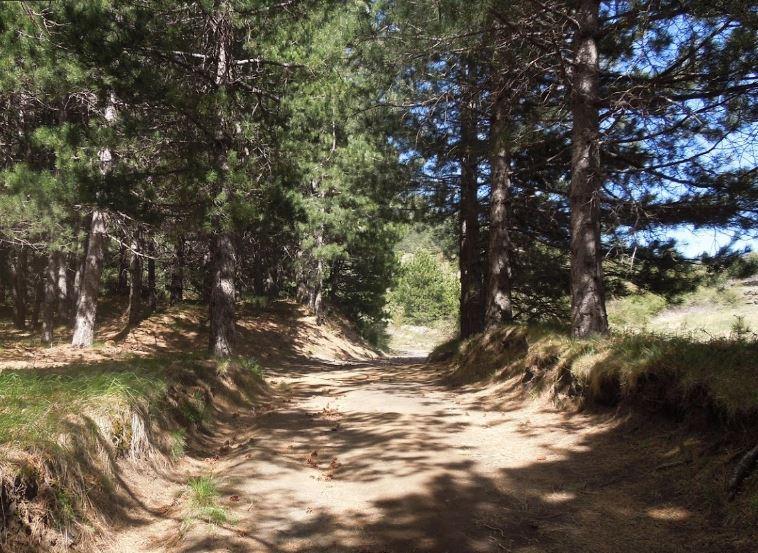 percorso parco dell'etna