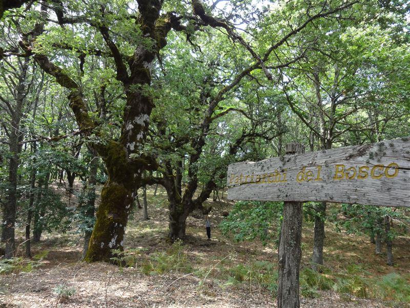 sentiero dei patriarchi malabotta